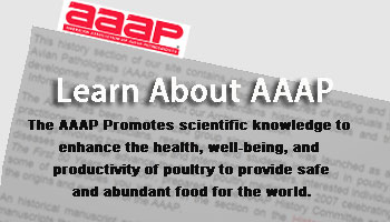 Welcome to AAAP